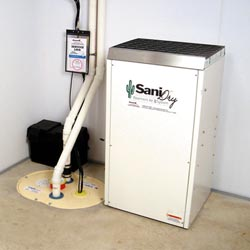 An ENERGY STAR® Rated basement dehumidifier installed in a home in Cambridge